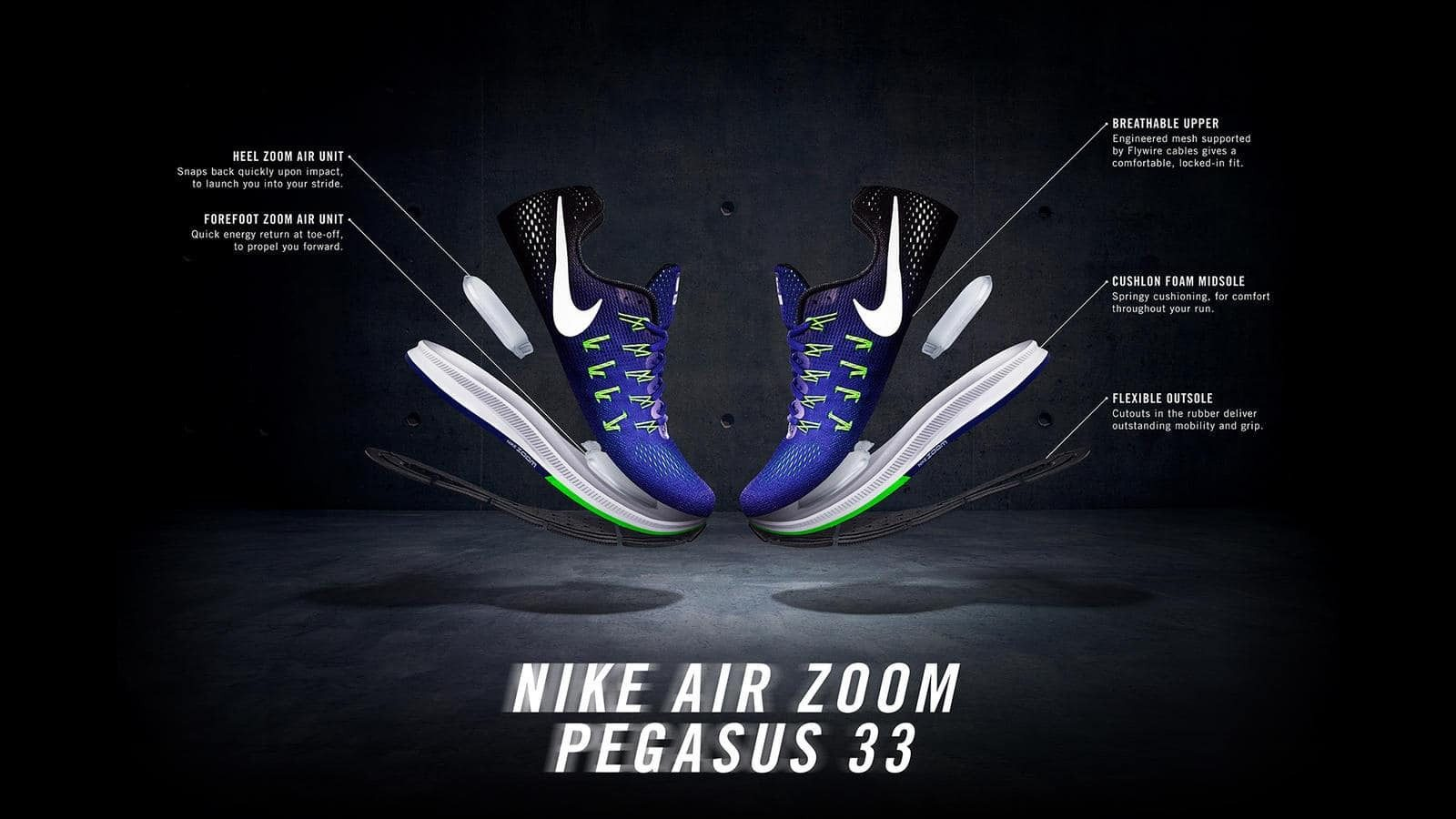 Pegasus33_banner